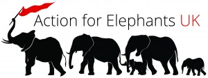 action-for-elephants-logo